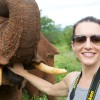 Stage and screen star Kristin Davis shows off her humanitarian side with <i>Helicopter for Elephants</i>