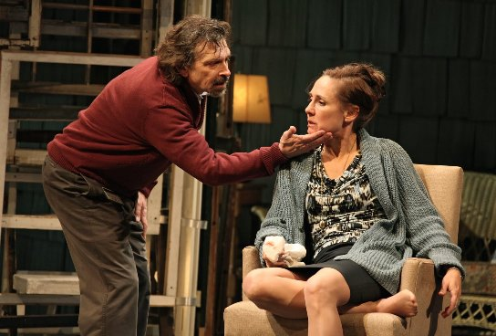 Laurie Metcalf in 'The Other Place'